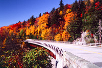 Viaduct in Fall