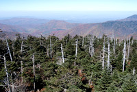 View from Clingman's Dome (2)