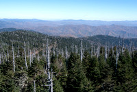 View from Clingman's Dome (1)